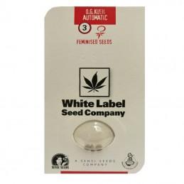 O.G. Kush Automatic (3 semienka) - Konopné semená White Label Seed Company