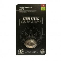 Sensi Skunk Automatic (3 semienka) - Konopné semená Sensi Seeds