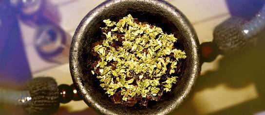 marihuana do vodnej fajky