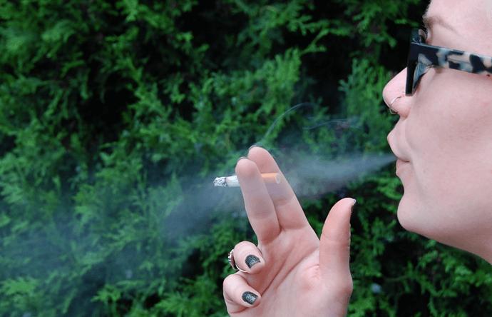 Najlepšie fajčenie vid